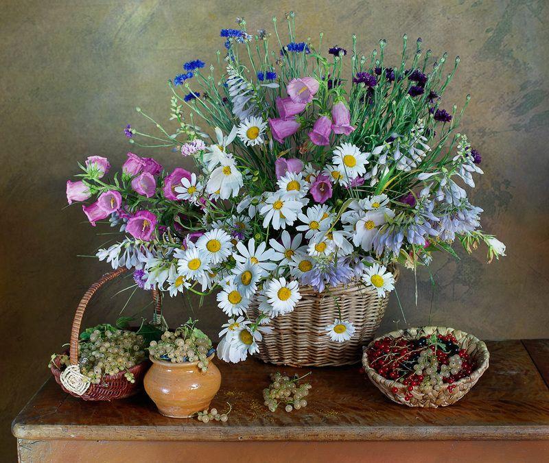 июль,цветы, вера павлухина,натюрморт, Июльский натюрмортphoto preview