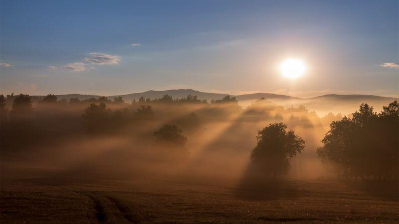 утро, рассвет, восход, туман, лучи Немного ясностиphoto preview
