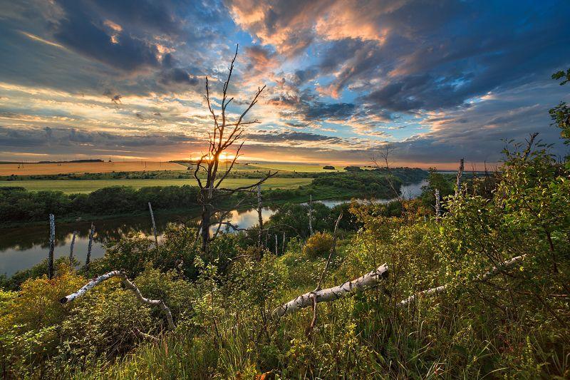 заповедник,галичья гора,закат,вечер Заповедная зонаphoto preview