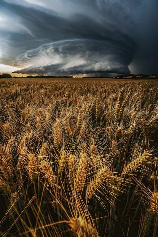 the stormphoto preview