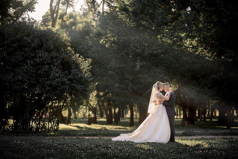 свадьба пара любовь ...photo preview