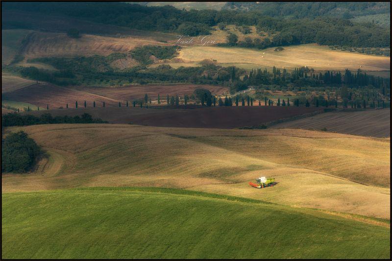 italy,san quirico d\\\'orcia,italia,комбайн,свет,пейзаж,италия,тоскана,вилла,toscana,лето,tuscany,cipressi, Урожай не ждётphoto preview