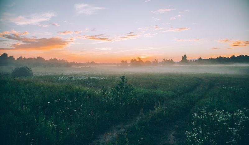 Туманное полеphoto preview