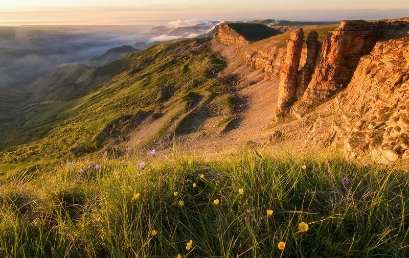 кавказ,горы,плато,цветы,закат. Закат на плато.photo preview