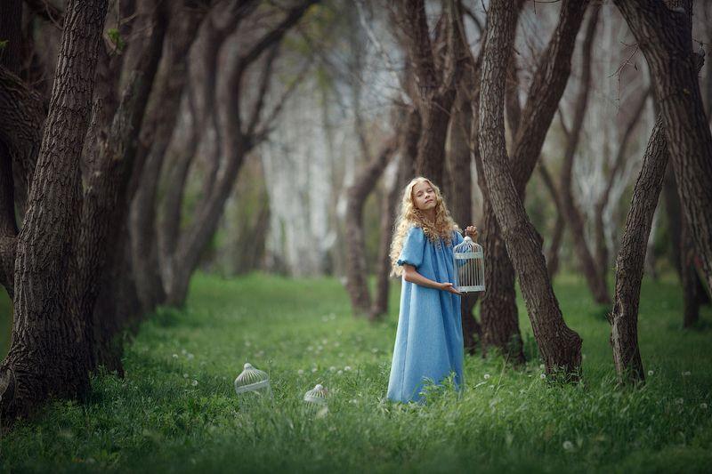 лес, дети, девочка,утро,состояние, эмоции В лесу)photo preview