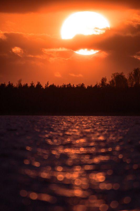 полистовский заповедник, озеро полисто, псковская область, закат, вода, оранжевый, свет, солнце, солнечно, апрель, вечер, год 2018, дикая природа, пейзаж на телевик, съёмка с лодки, Закатные краски озера Полистоphoto preview