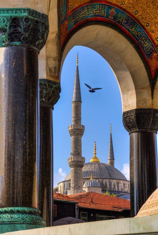 Стамбул, Турция, Немецкий фонтан, Голубая мечеть, птица, минарет Вид на Голубую мечеть сквозь арки Немецкого фонтанаphoto preview