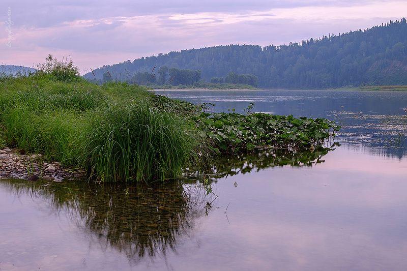 река, мрас-су, посёлок турала, природа, тайга, лес, горная шория, лодка, мотор, лодочная станция Вечер на реке Мрас-Суphoto preview
