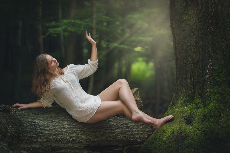 forest, girl, wood, tree, magic, fairy, fairytail, joung, light,  Forestphoto preview