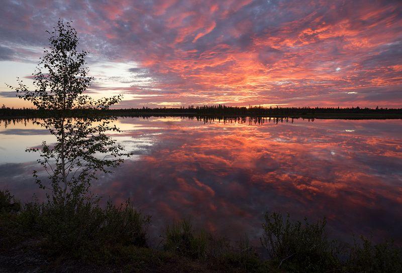 закат, небо, озеро, вода, облака, природа, сибирь Закатphoto preview