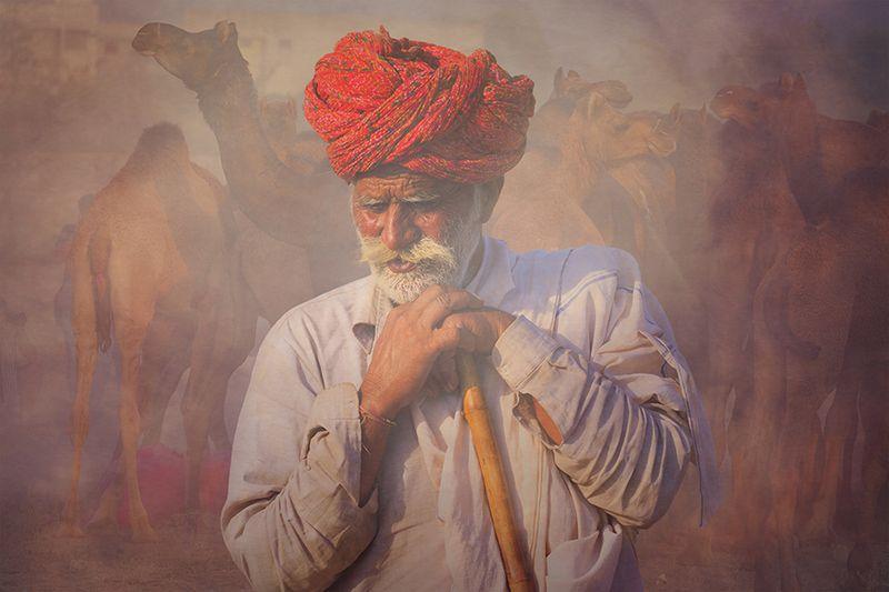 Rajasthani ,INDIA,man Old Rajasthani manphoto preview