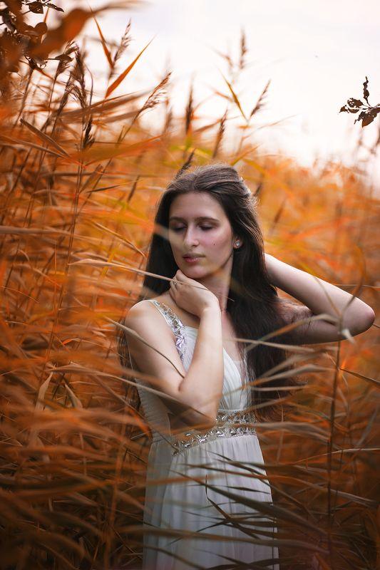 модель, девушка, портрет, свет, цвет, трава, болото, платье, волосы, руки, лицо, шея, красота, красивая, брюнетка Аняphoto preview