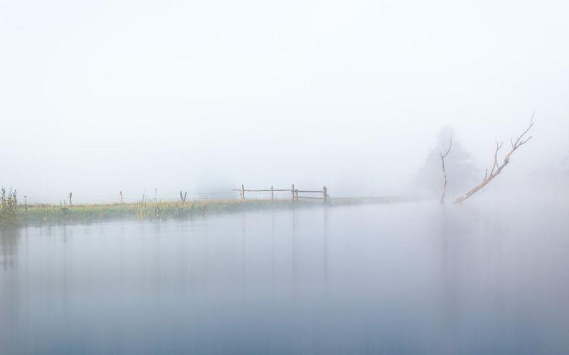 dawn,fog,sky,river,gwda,nature,landscape,tree,pasture,summer,nikon,water, Minimalizmphoto preview