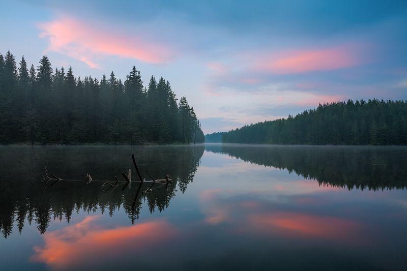 отражения, вода, озеро, закат, лес Отраженияphoto preview