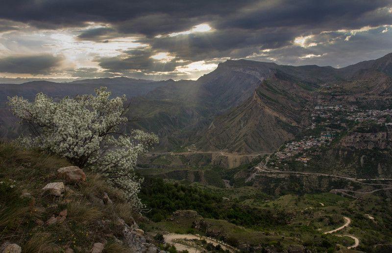 Май в Дагестанеphoto preview