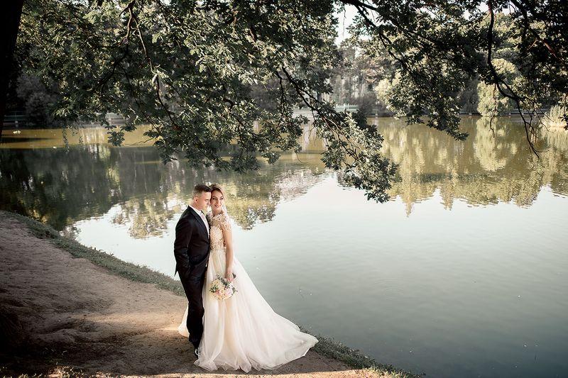 свадьба ...photo preview