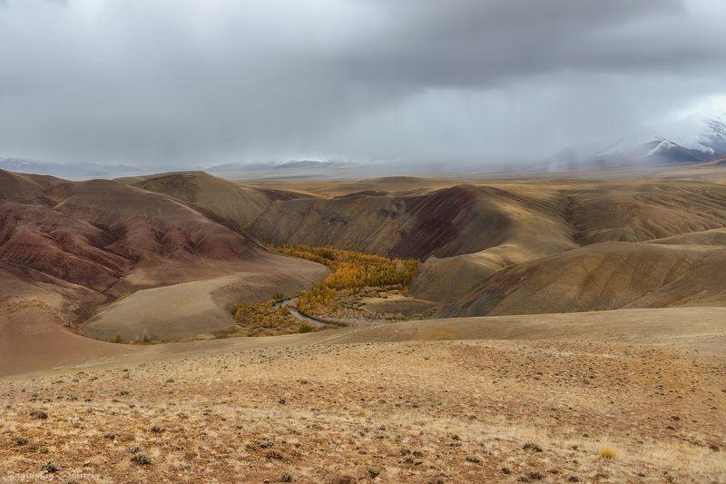 алтай, осень, горы Просторы Алтаяphoto preview