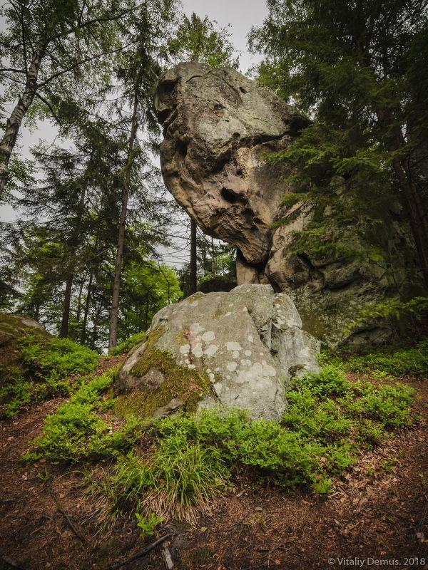 Лесной страж. Карпаты. Покуття.photo preview