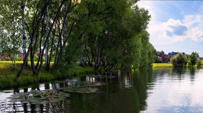 старая москва потапово пруды лето На самом юге \