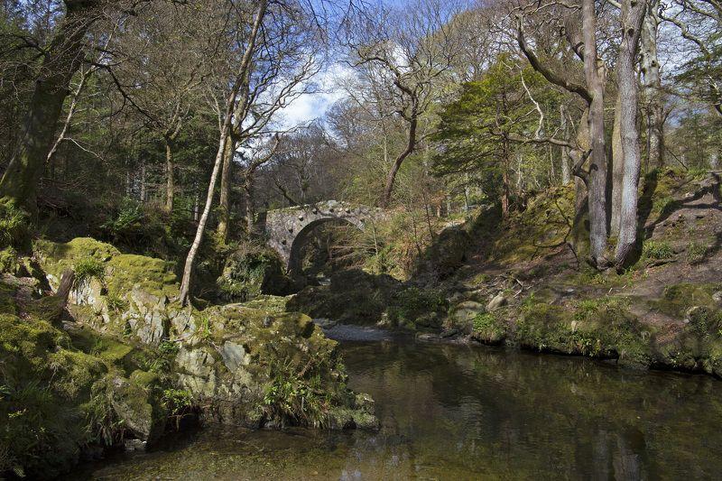 мост, река, лес, весна, пейзаж, северная ирландия Старый мостик в Tollymore forest park Северная Ирландияphoto preview