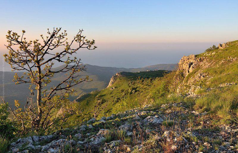 утро, крым, горы photo preview