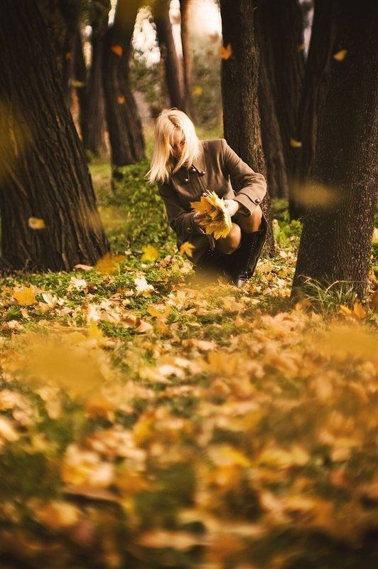 листопад, ноябрь, осень, юпитер 9 photo preview