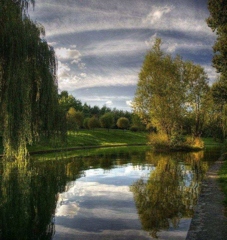 осень, река, остров, деревья, свислочь, минск photo preview