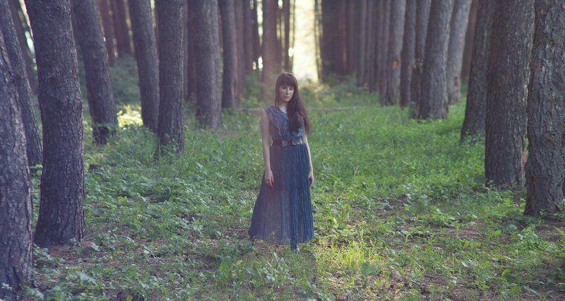 лето, девушка, красиво, солнце, закат, портрет, лес photo preview