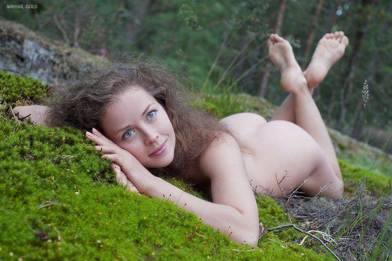 deep, forest, , svenska, sagor, шведские, сказки, дремучий, лес photo preview
