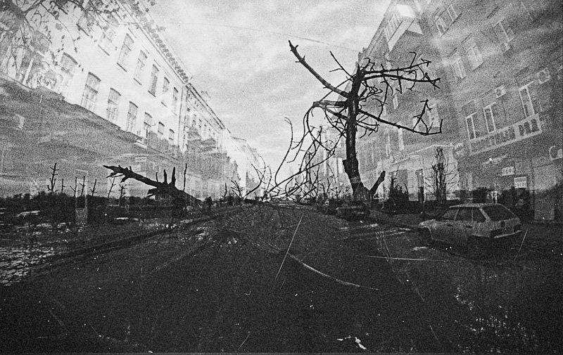фишай, машина, деревья, дорога, город, пленка, мультиэкспозиция 2 города / 2 судьбыphoto preview