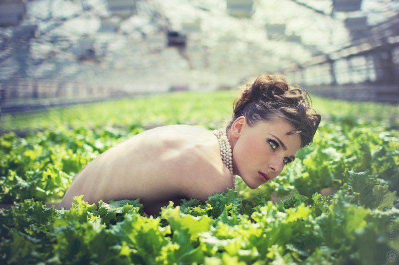 салат, девушка, растения, экология, голая, зелень, ферма photo preview