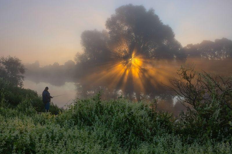 Утро на рыбалкеphoto preview