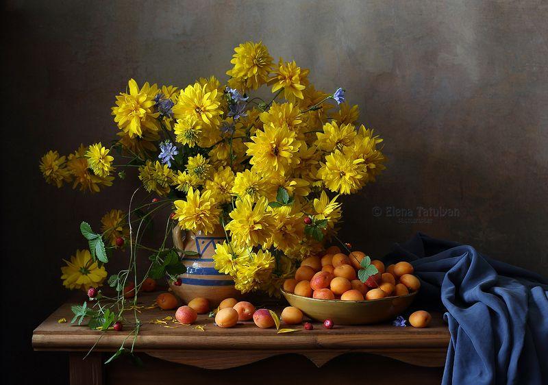 золотые шары, дюшенея, абрикосы, ягоды, лето, рудбекия, цикорий Щедрый августphoto preview