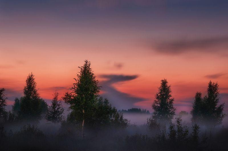 природа, закат, туман, солнце, пейзаж, nature, sunset, fog, sun, fog, landscape Дорога в небоphoto preview