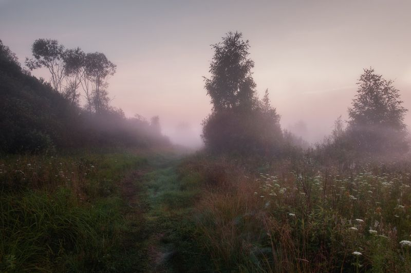природа, рассвет, туман, солнце, туман, пейзаж, nature, dawn, fog, sun, fog, landscape Пробужденияphoto preview