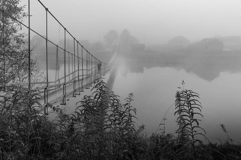 утро,природа,туман,пейзаж,мост,россия,жанр \