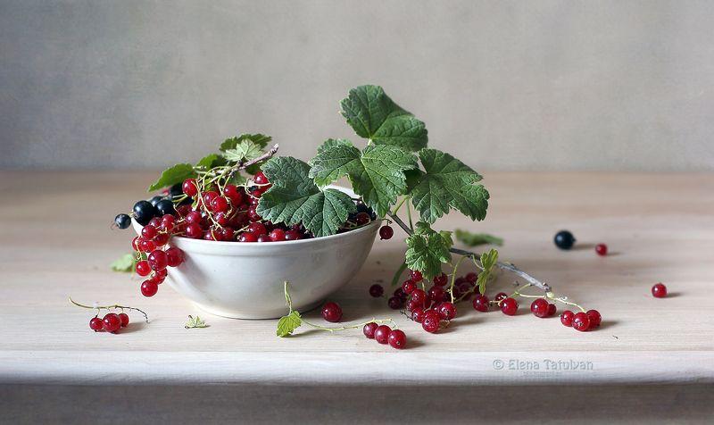 лето, смородина, ягоды Смородинаphoto preview