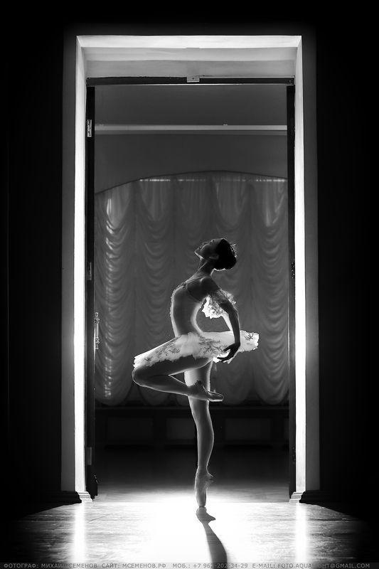 михаилсеменов, балет, портрет, русскийбалет, девушка, контур, чб Дыхание балетаphoto preview