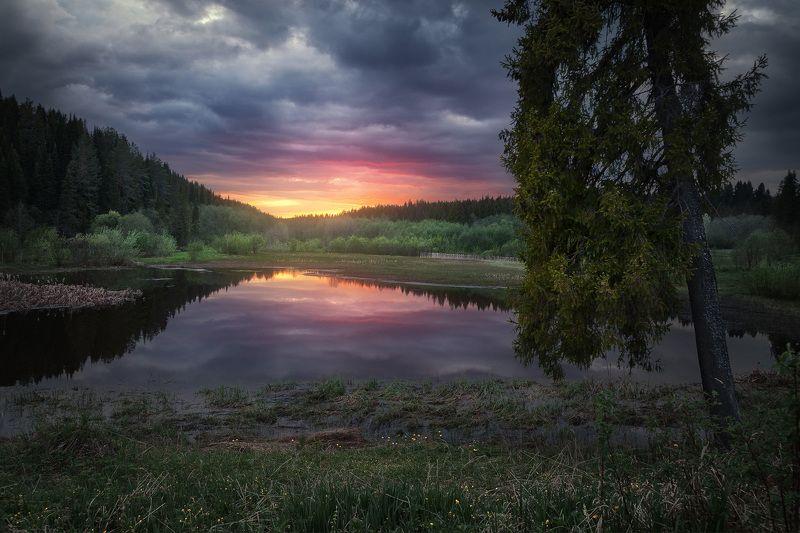закат, весна, озеро, пруд, отражение, небо, ель, дерево Весенний прудphoto preview