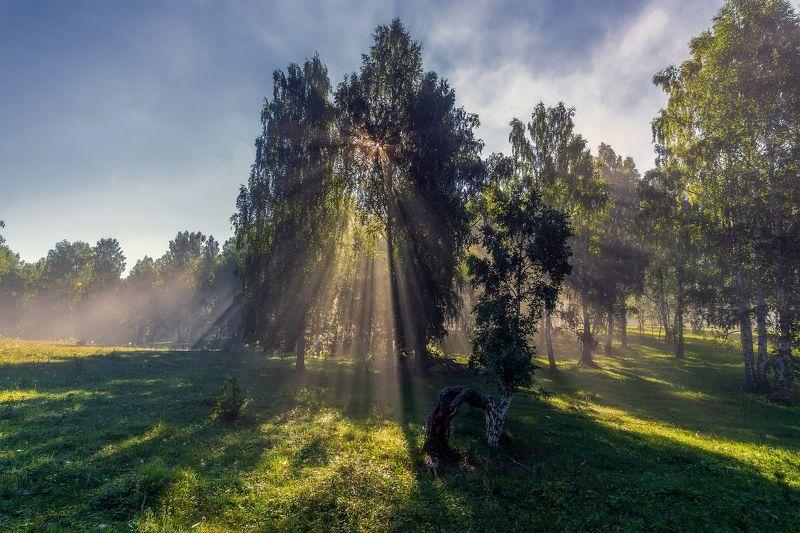 утро, рассвет, восход, туман, лучи Лучистостьphoto preview
