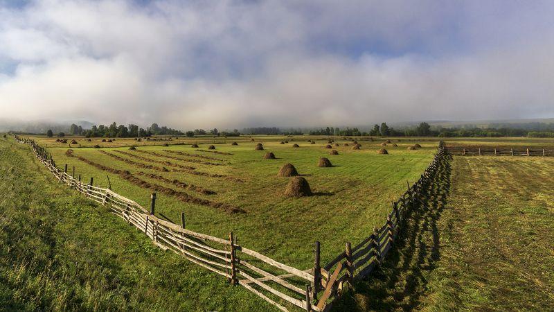 луга, трава, сено, стога Геометрия покосаphoto preview