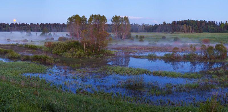 ленинградская область, ленобласть, волосовский район, урочище хюльгюзи, болото \