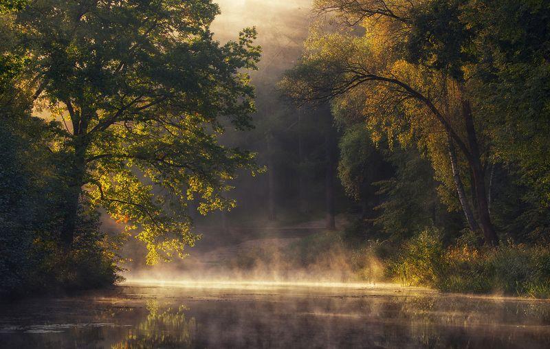 Утро на озере фото превью