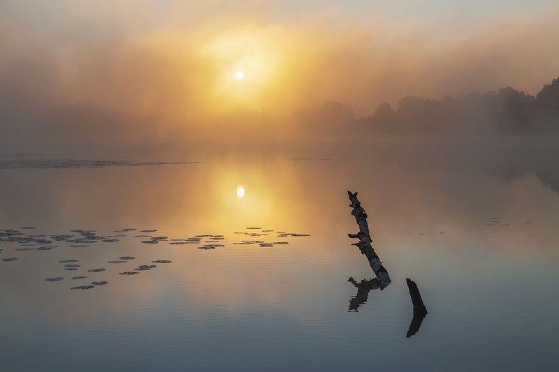 рассвет, туман, озеро *****photo preview