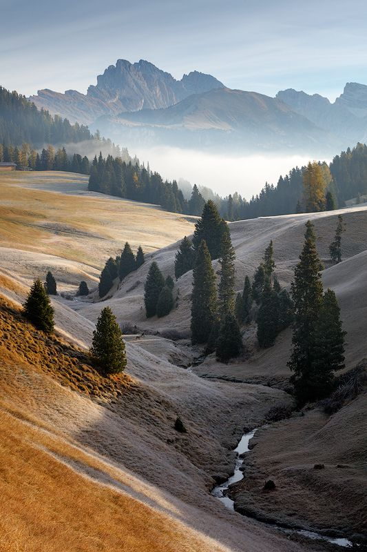 morning, light, alps, mountains, italy, dolomites, peaks, fog, mist, valley, trees, europe, landscape Dolomitesphoto preview
