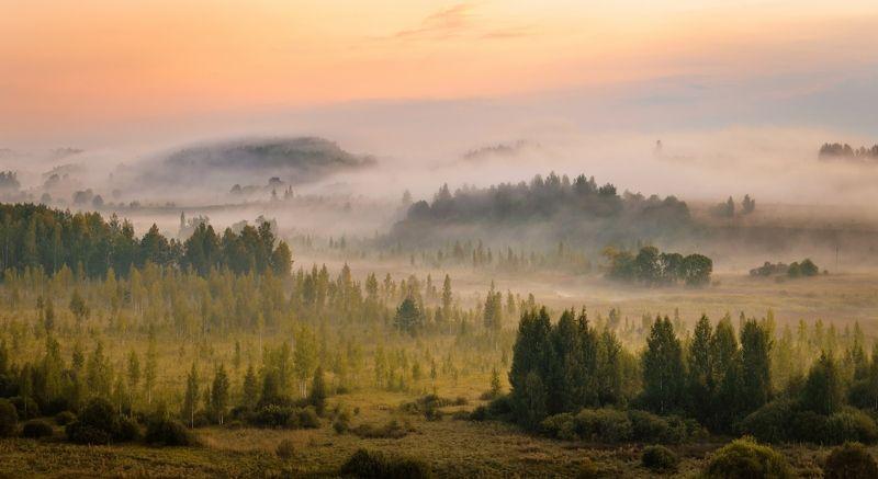 пейзаж Утро туманное.photo preview