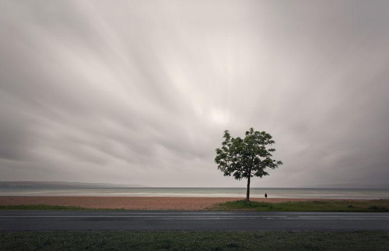 пейзаж, небо, выдержка, вода, минимализм, дерево Мгновениеphoto preview