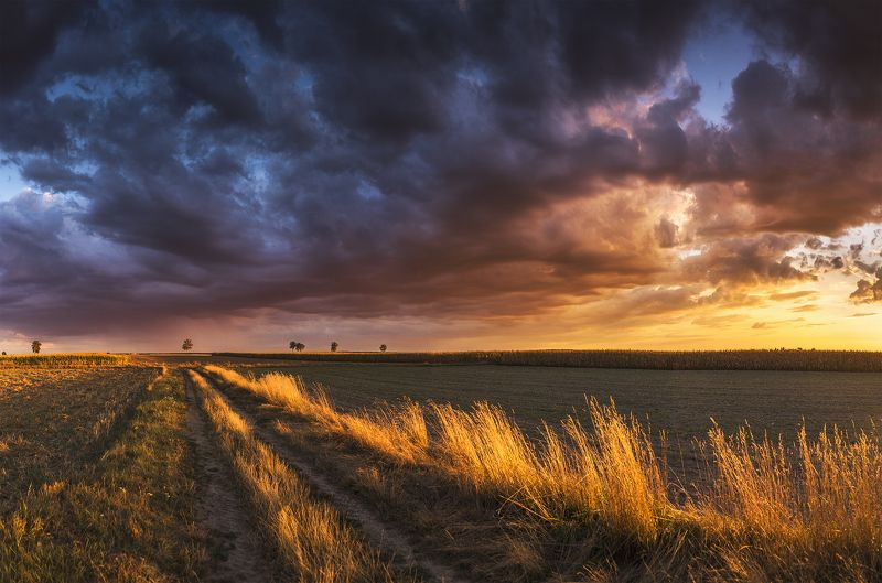 sunset, clouds, storm, red, village, rural, trees, nature, dramatic, sky, summer, Firephoto preview
