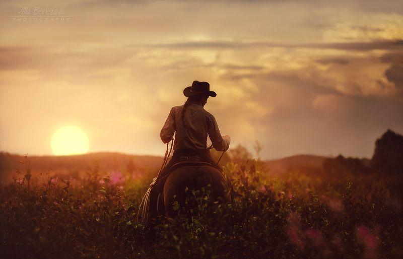 поле, лошадь, закат, ковбой, field, horse, sunset, cowboy закатный вечерphoto preview