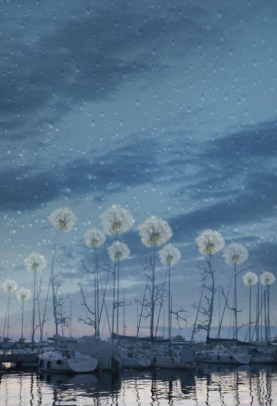 Сон в летнюю ночьphoto preview
